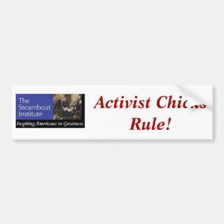 Steamboat Institue--Aktivisten-Küken-Regel! Autoaufkleber