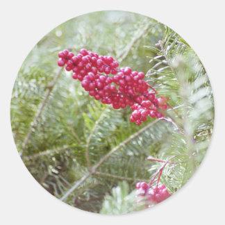 Stechpalmen-Beeren-Weihnachtsaufkleber Runder Aufkleber