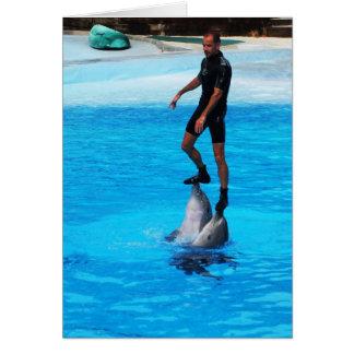 Stehend auf Delphinen Karte