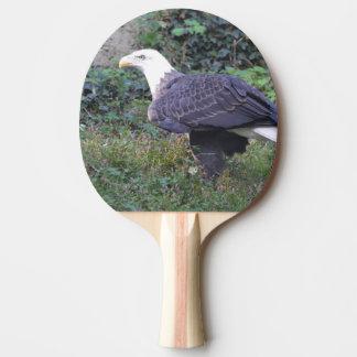 Stehender amerikanischer kahler Adler Tischtennis Schläger