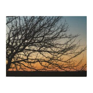 Steigungs-Himmel im Winter Holzwanddeko