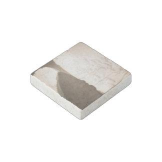 Stein-Magnet