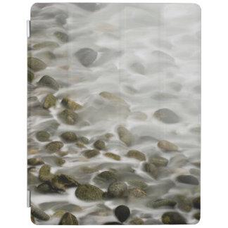 Steinpunkt-Lobos-Staats-Reserve des strand-|, CA iPad Smart Cover