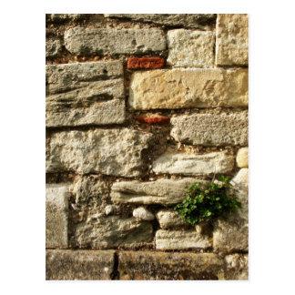Steinwand. Mit kleiner Anlage Postkarte