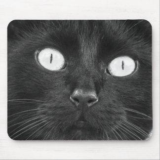 Stellen Sie Ihr eigenes Katze Foto-Mousepad her Mousepad