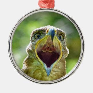 Steppe-Eagle-Kopf 001 2,1 Silbernes Ornament