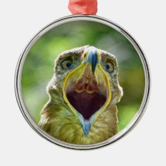 Steppe-Eagle-Kopf 004 01., schreiend Rundes Silberfarbenes Ornament