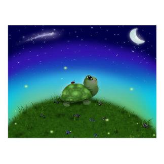 Stern, der Schildkröte anstarrt Postkarte