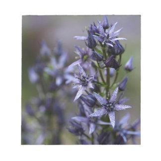 Stern Swertia (Swertia perennis) Notizblock