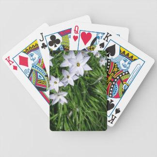 Stern von Bethlehem-Blumen Bicycle Spielkarten