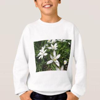 Stern von Bethlehem-Blumen und -gänseblümchen Sweatshirt