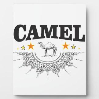 Sterne des Kamels Fotoplatte