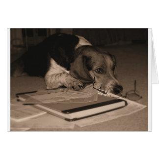 Steuer-Zeit - Foto des Beaglehund CPA Karte
