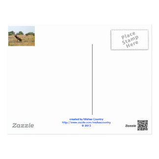 Stier-Elche Postkarte