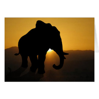 Stier-Elefant Karte