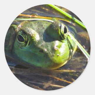 Stier-Frosch-Aufkleber Runder Aufkleber