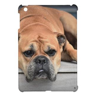 Stier-Hund iPad Mini Hülle