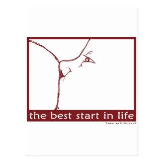 Stillen - der beste Anfang im Leben Postkarte
