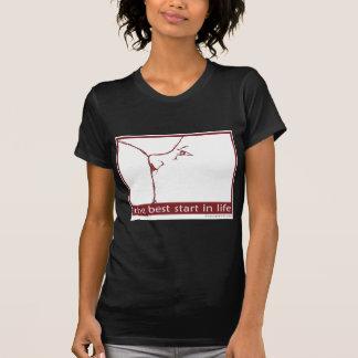 Stillen - der beste Anfang im Leben T-Shirt