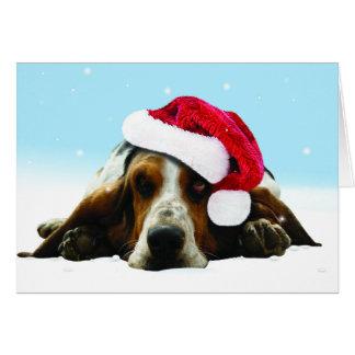Stillewelpe mit Weihnachtsmannmütze Karte