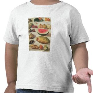 Stillleben mit Frucht und Kröte T-Shirts