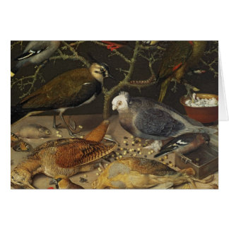 Stillleben von Vögeln und von Insekten, 1637 Karte