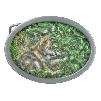 Stillstehendes Baby-Wolf-Welpen-Tier-Foto Ovale Gürtelschnallen