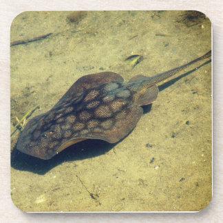 Stingray-Ozean-Tier-Tierseekorken-Untersetzer Getränkeuntersetzer