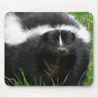 Stinktier-Foto-Mausunterlage Mousepads