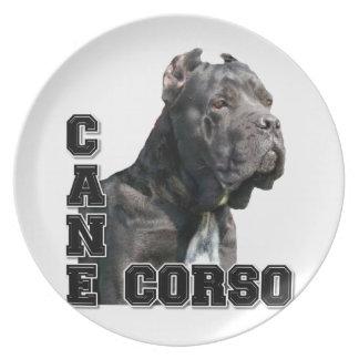 Stock Corso Teller