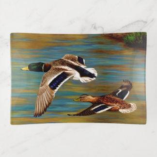 Stockente duckt das Fliegen über Teich Dekoschale