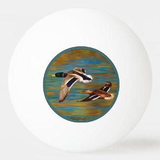 Stockente duckt das Fliegen über Teich Tischtennis Ball