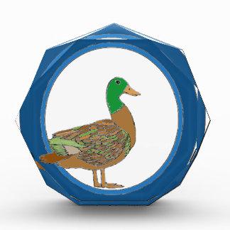 Stockenten-Ente Auszeichnung