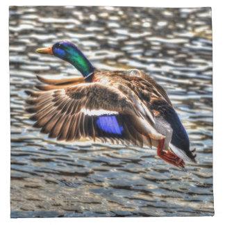 Stockenten-Enten-Tier-Foto für Vogel-Liebhaber Serviette
