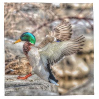 Stockenten-Enten-Tier-Foto für Vogel-Liebhaber Stoffserviette