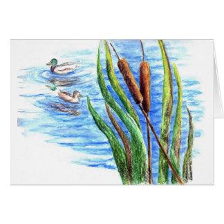 Stockenten und Cattails - Aquarell-Bleistift Karte