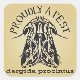 Stolz eine Plage, dargida procintus Quadratischer Aufkleber