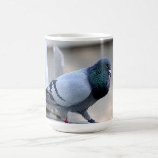 Stolze Zieltauben-Tasse Tasse