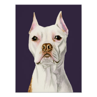 """Stolzes und hohes"" weißes Pitbull-Hundeporträt Poster"