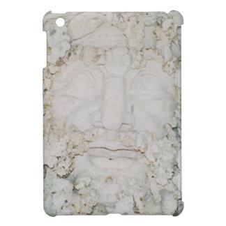 Stone-Face3 iPad Mini Hülle