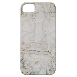 Stone-Face3 iPhone 5 Etuis