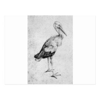 Storch durch Albrecht Durer Postkarte
