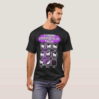 Störrische amerikanische Bobtail Katzen-lustiges T-Shirt