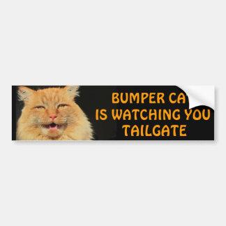 Stoßkatze passt Sie HECKKLAPPE 13 Meme auf Autoaufkleber
