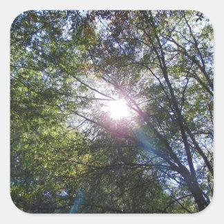 Strahl der Sonne Quadratischer Aufkleber