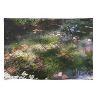 Strahlen und Blätter auf Wasser Tischset