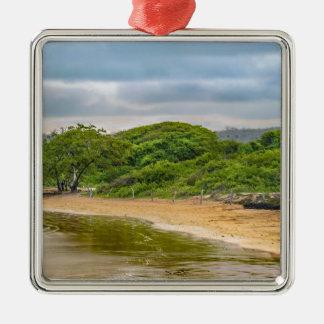 Strand EL Garrapatero, Galapagos, Ecuador Quadratisches Silberfarbenes Ornament