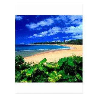 Strand Haena Kauai Hawaii Postkarte
