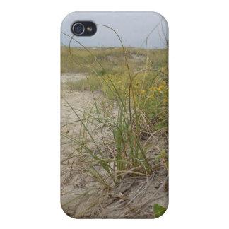 Strand-Herbst-Wildblumen Schutzhülle Fürs iPhone 4