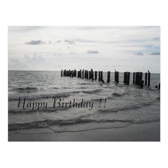 Strand in Florida Pelikane Geburtstagskarte Postkarte